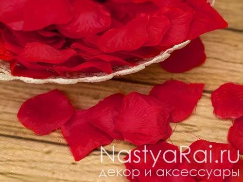 Лепестки роз алого цвета